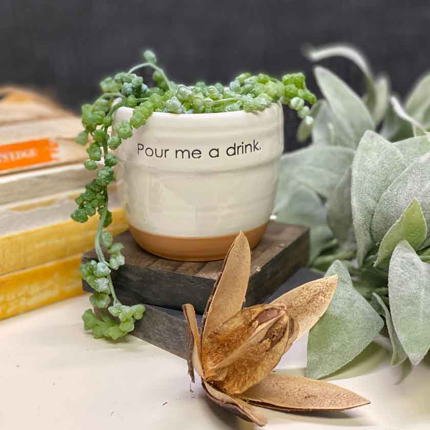 Pour Me A Drink Ceramic flowerpot - Wills Co