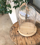 Medium Glass Kloche with Wood Base and Rope Handle 26cm x 35cm