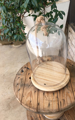 Large Glass Kloche with Wood Base and Rope Handle 28cm x 42cm