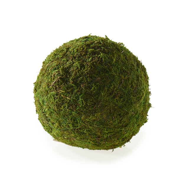 Decorative Moss Sphere