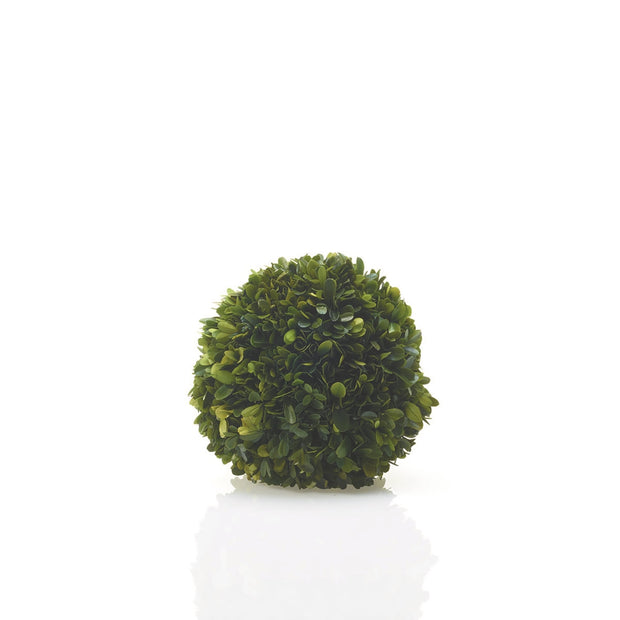 Natural English Boxwood Sphere