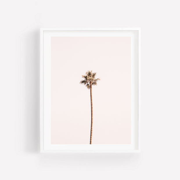 Lonely Palm Print