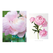 Peonies Coffee Table Book