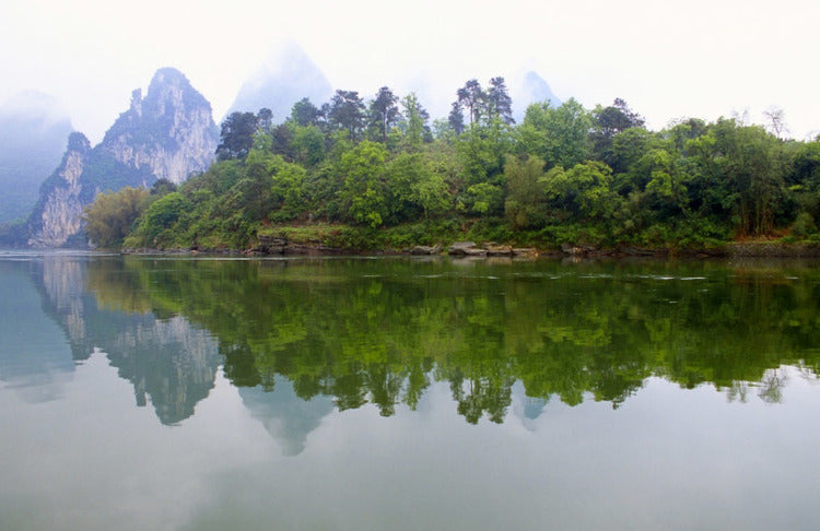 china landscape water and trees on overcast day