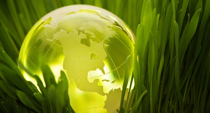 Green earth globe in green grass