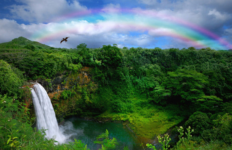 Kauai Hawaii waterfall and rainbow