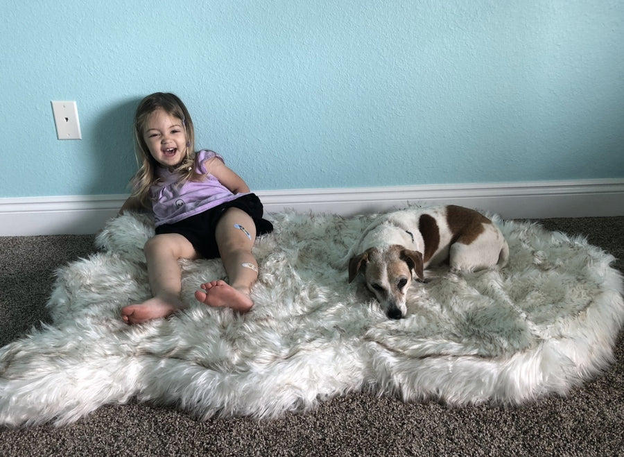 Paw & Co Soothing Rug™ - Paw And Company