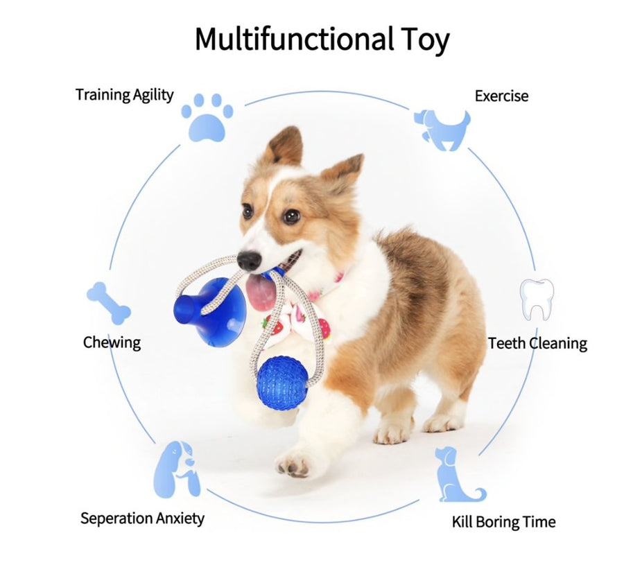 Paw & Co Tugger Toy™ - Paw And Company