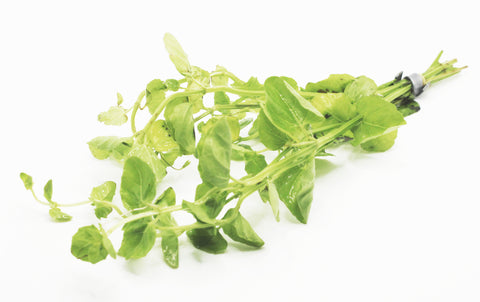Bunched Mint Charlie