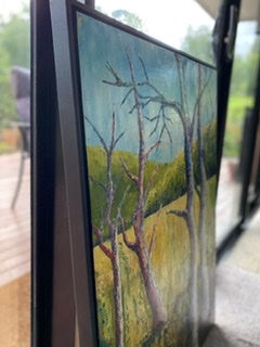 Raw Beauty  (in a black pine floating frame)- ON HOLD- this is currently in a gallery