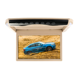 Overhead Car DVD Player System - Daniels Store
