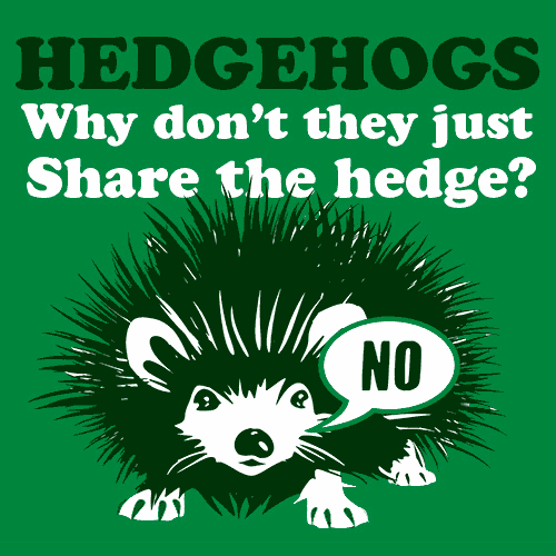 Hedgehogs Why Dont They Just Share The Hedge