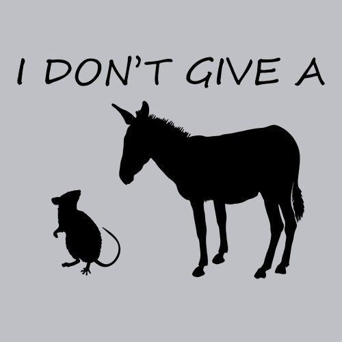 T-Shirts - I Don't Give A Rats Ass
