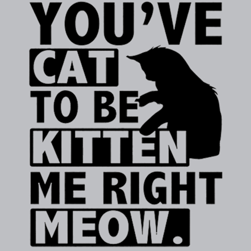You Ve Cat To Be Kitten Me Right Meow T Shirt Textual Tees