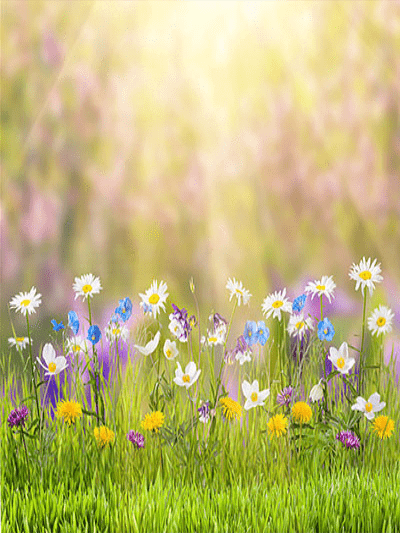 Katebackdrop£ºKate Spring Natural Scenic Easter Colorful Flowers Photography Backdrop