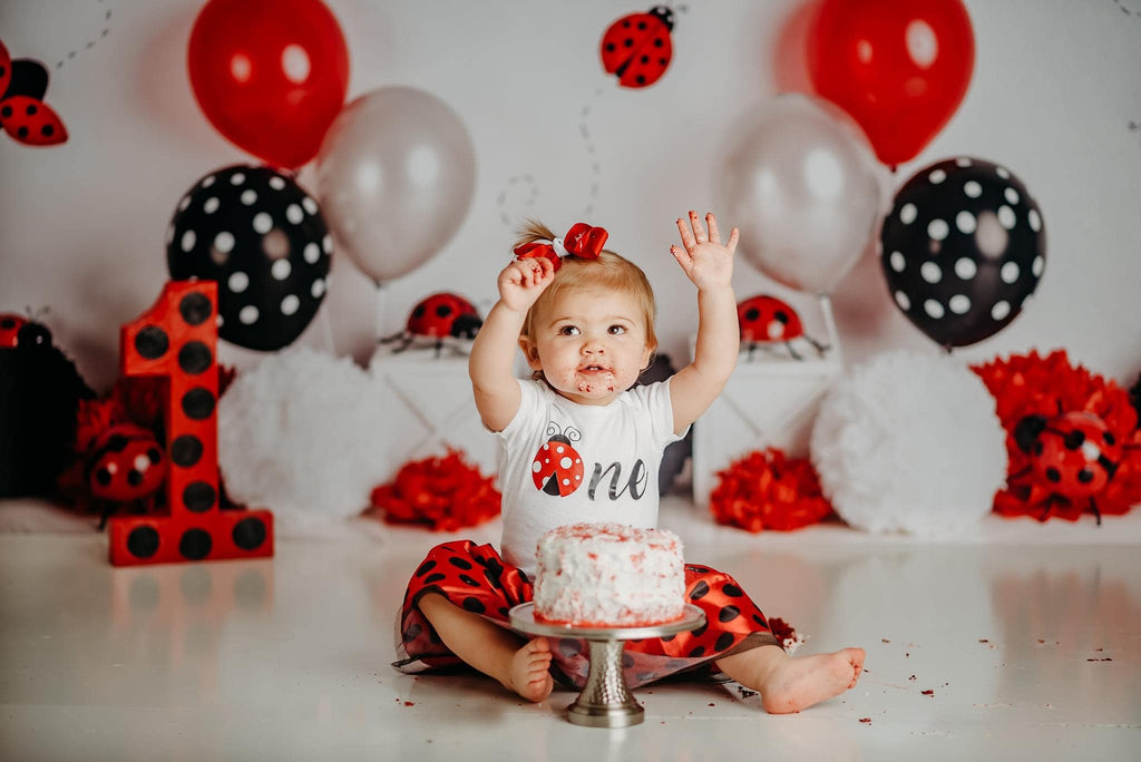 Kate Little Lady Bug Birthday Children Backdrop Designed By Mandy Ringe Photography