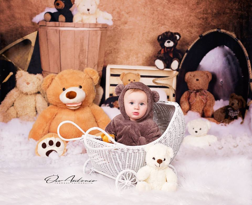 Load image into Gallery viewer, Kate Teddies in Dreamland Backdrop for Photography Designed by Amanda Moffatt