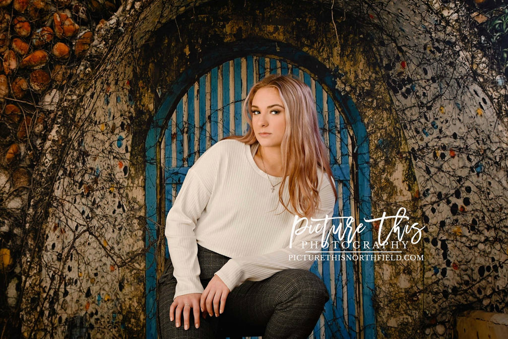 Kate Cool Blue Barn Door Backdrop designed by Jerry_Sina