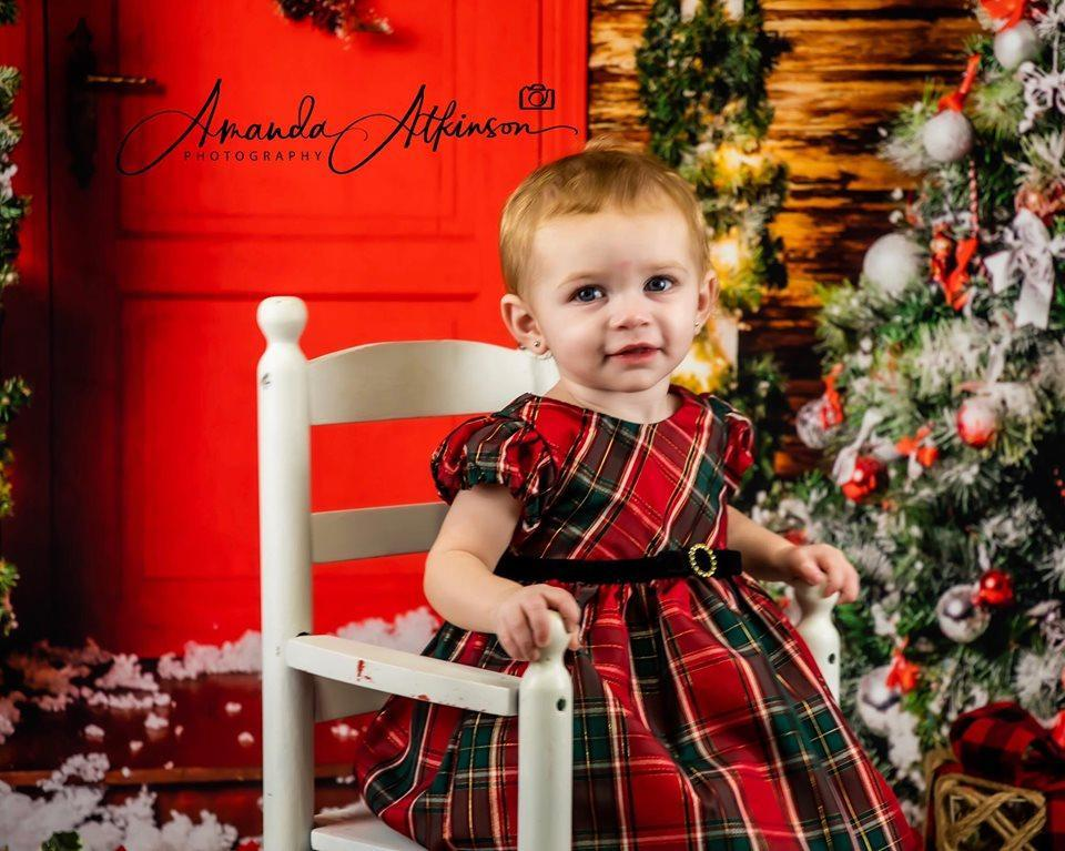 Kate Christmas Trees Red Door Backdrops for Photography