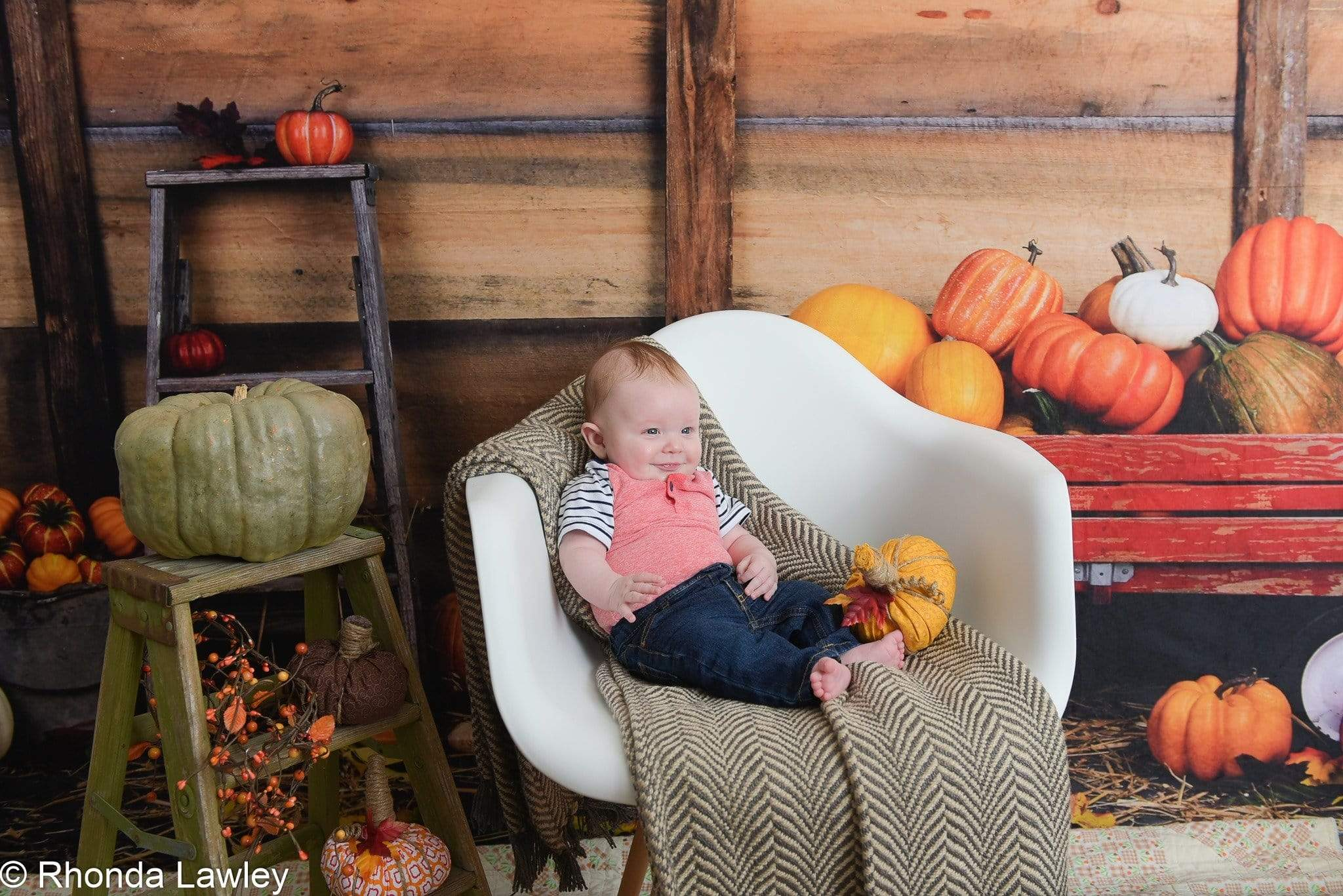 Load image into Gallery viewer, Kate Pumpkin Harvest Backdrop Autumn and Halloween designed by Arica Kirby