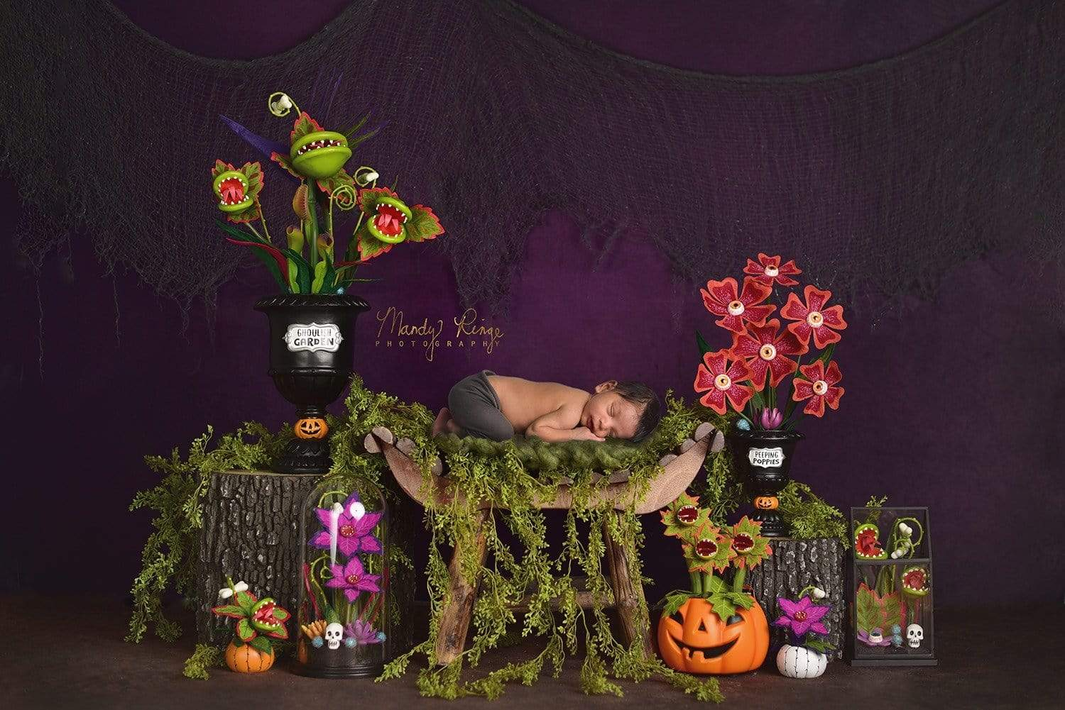 Load image into Gallery viewer, Kate Spooky Garden Halloween Backdrop Designed By Mandy Ringe Photography