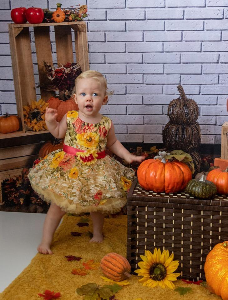 Load image into Gallery viewer, Kate Fall Harvest Festival Pumpkin Backdrop for Photography Designed By Michele Ernst Photography