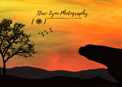 Kate African Sunset Scenery Backdrop for Photography Designed By Stacilynnphotography