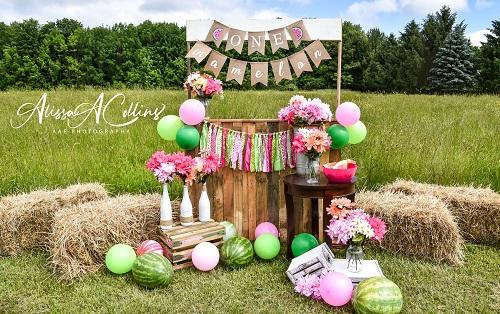 Kate Summer Backdrop Watermelon Stand Designed by AAE Photography