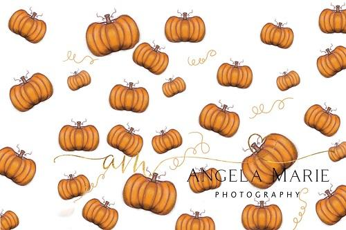 Kate Fall/Thanksgiving Pumpkins Backdrop Designed By Angela Marie Photography