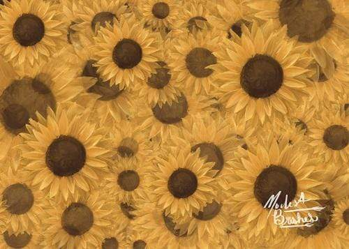 Kate Sunflowers Symphony Backdrop Designed by Modest Brushes