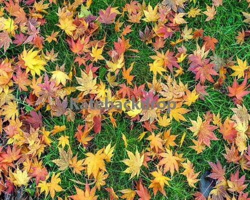 Kate Colorful Maple Leaves Rubber Floor Mat