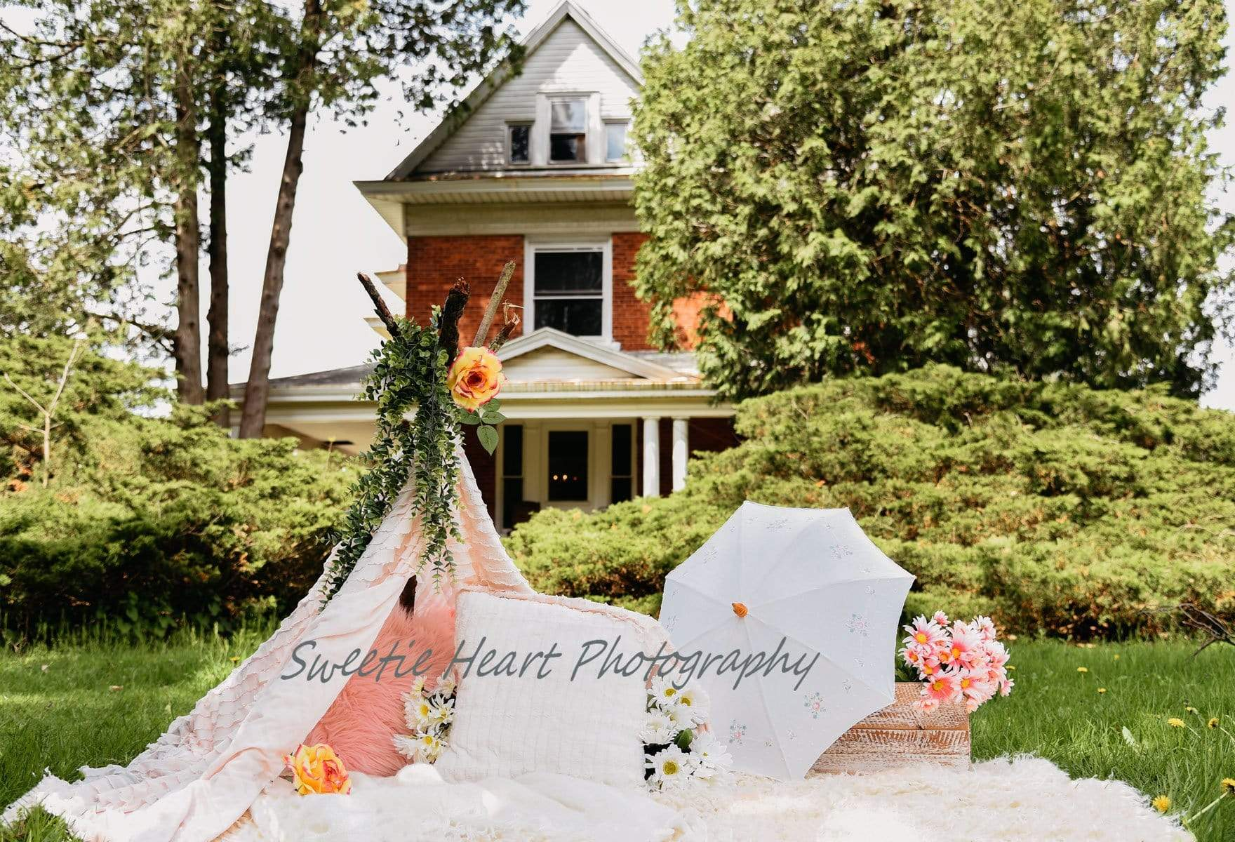 Load image into Gallery viewer, Kate Day Dreamer Picnic Backdrop for Photography Designed by Keerstan Jessop