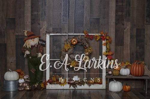 Kate Pumpkins Harvest Wooden Backdrop Designed By Erin Larkins