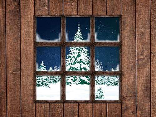 Kate Christmas Window Snow View Wooden Backdrop for Photography Designed By Jerry_Sina