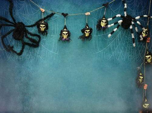 Load image into Gallery viewer, Kate Halloween Spider Web Props Backdrop Photography Designed By Jerry_Sina
