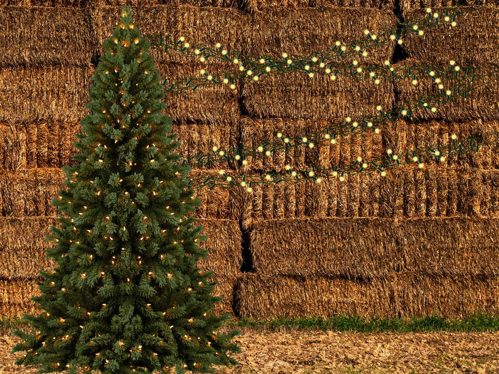 Load image into Gallery viewer, Kate Autumn Pine Trees Haystack Backdrop Designed By Jerry_Sina