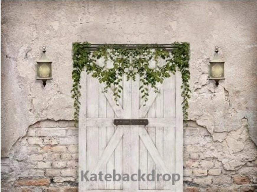 Kate Spring Vintage Wall Backdrop Barn Door for Photography