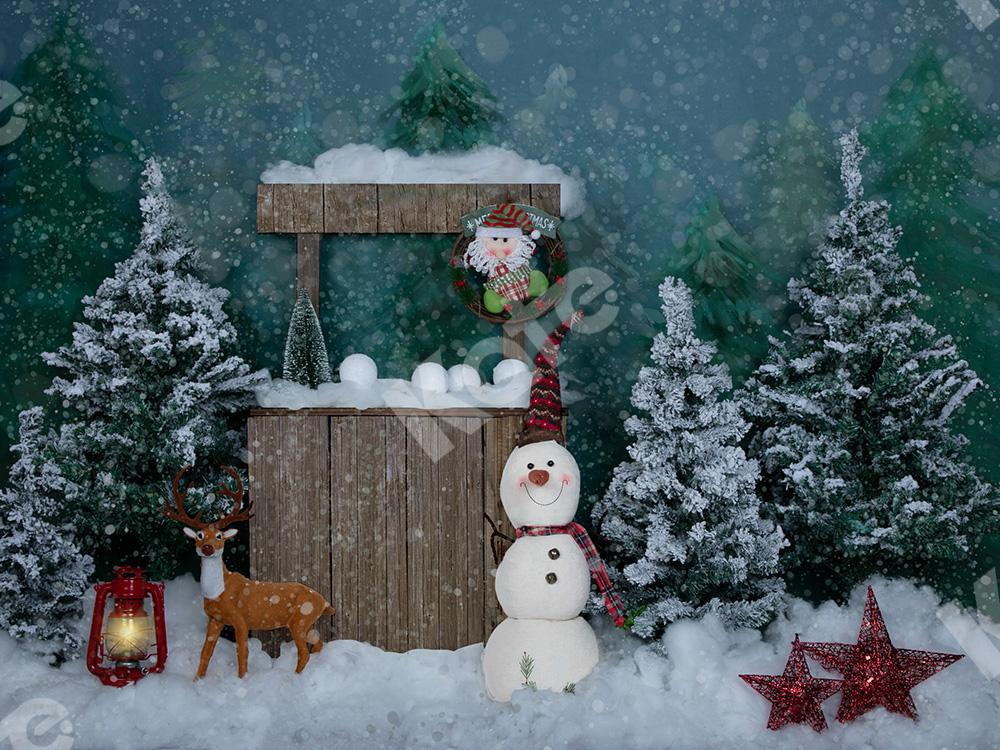 Kate Winter Christmas Backdrop with Snowman for Portrait Designed by Jia Chan Photography