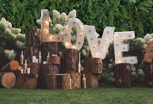 Kate Spring Love Valentine's Day Backdrop for Wedding Photography