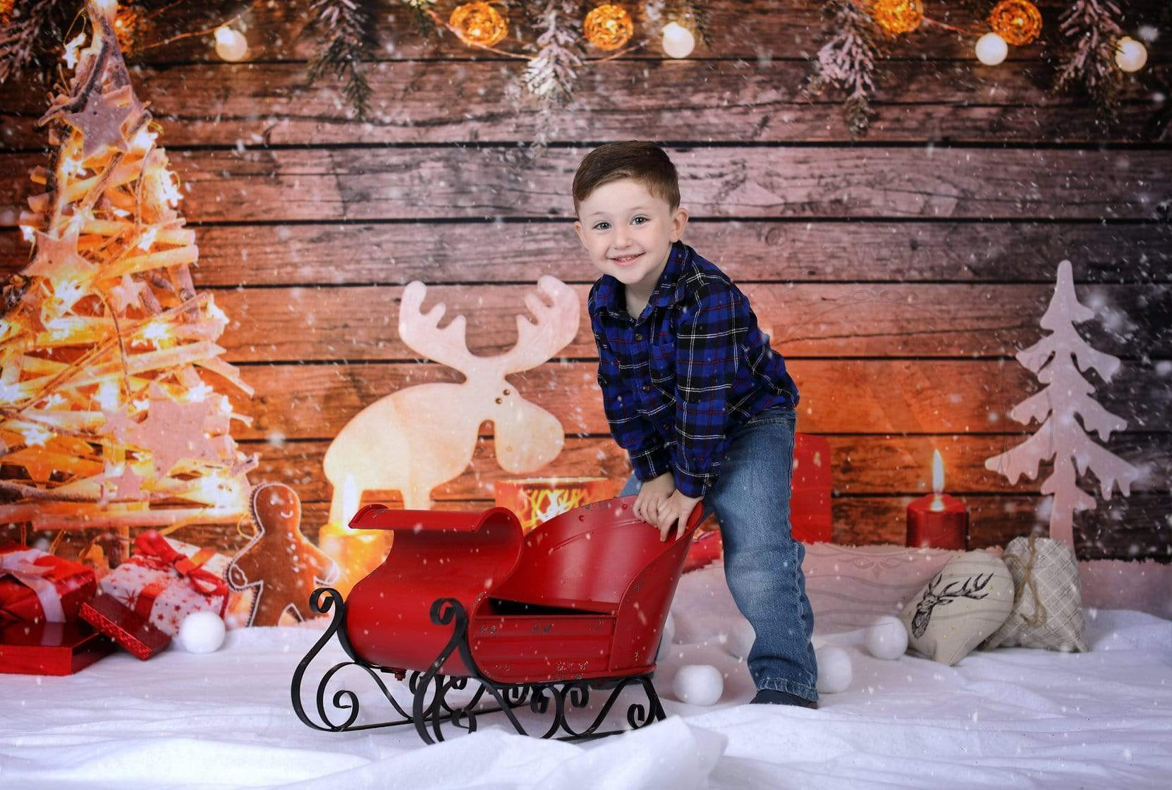Load image into Gallery viewer, Kate Christmas Photo Backdrop Snow Wooden Light Wall