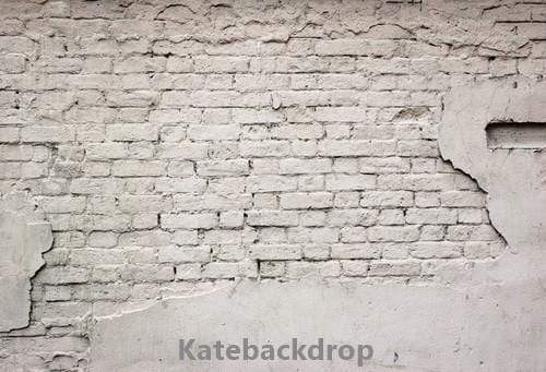 Load image into Gallery viewer, Kate Damaged Vintage Brick Backdrop for Photography