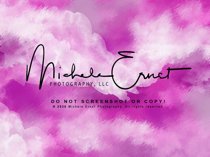 Kate Pink Abstract Backdrop Designed By Michele Ernst Photography