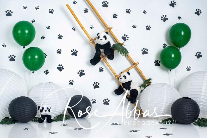 Kate Pet Paw Panda Backdrop Designed by Rose Abbas