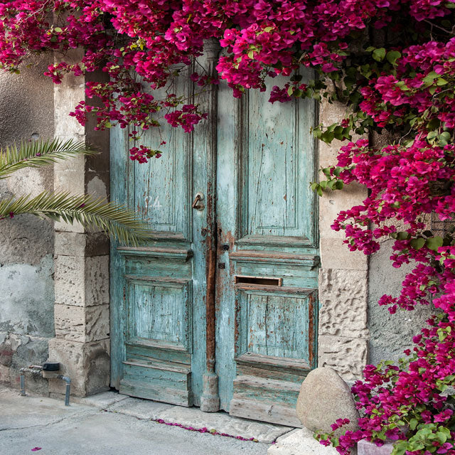 Kate Blue Door Red Floral Scenery Concrete Backdrops
