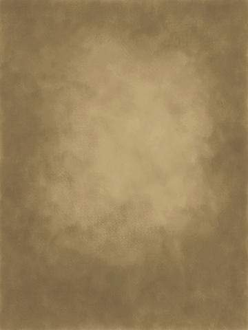 Load image into Gallery viewer, Kate Gold little brown Texture Abstract Background Photos Backdrop