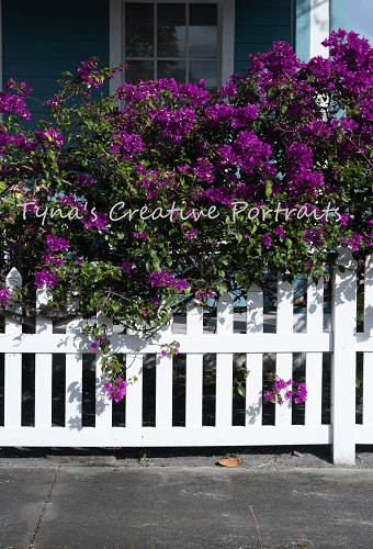 Load image into Gallery viewer, Kate Railings and Flowers Spring Backdrop Designed by Tyna Renner