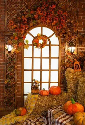 Kate Autumn Window Thanksgiving Pumpkins Backdrop for Photography
