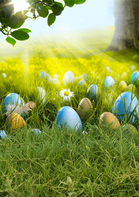 Load image into Gallery viewer, Kate Happy Easter Eggs Spring Flowers Backdrop