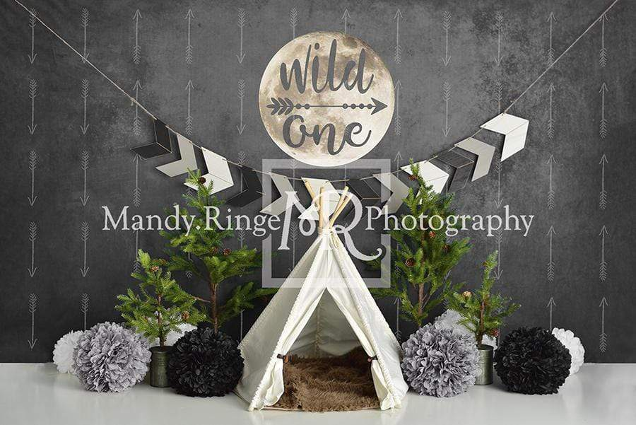 Kate Wild One Boy First Birthday Backdrop Designed By Mandy Ringe Photography