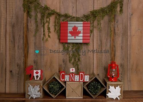 Kate Canada Day Backdrop Designed by Melissa King